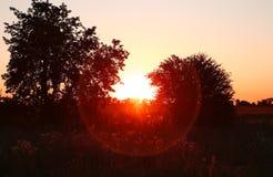 Красочный фиолетовый заход солнца Стоковая Фотография RF
