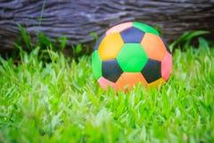 Красочный футбол на спортивной площадке с зеленой травой в задворк для детей Multicolor футбольный мяч на спортивной площадке зел стоковое фото rf