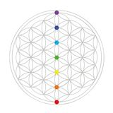 Красочный цветок геометрии жизни иллюстрация вектора