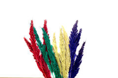 Красочный цветок на деревянных предпосылках Стоковые Фото