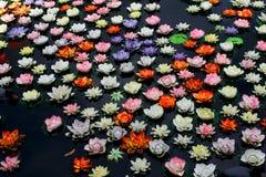 Красочный цветок лотоса в реке стоковая фотография rf