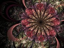 Красочный цветок фрактали, цифровое художественное произведение Стоковые Фотографии RF