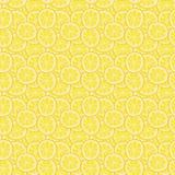 Красочный цитрус лета Стоковое Фото