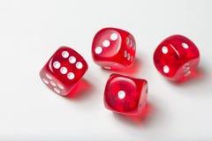 Красочный dices предпосылка изолированная на белизне Стоковое Изображение RF