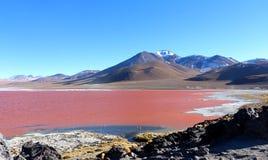 Красочный Laguna Colorada, Салар de Uyuni, Боливия стоковая фотография rf
