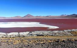 Красочный Laguna Colorada, Салар de Uyuni, Боливия стоковые фото