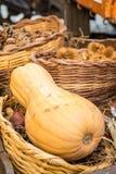 Красочный vegetable ассортимент на рынке Стоковое фото RF