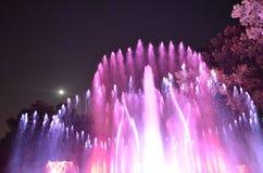 Красочный waterworks Стоковые Фото