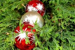 3 красочных украшения рождества на зеленых иглах сосны Стоковая Фотография RF