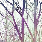 Крася дизайн Стоковые Фотографии RF