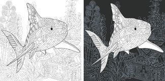 Крася страницы с акулой иллюстрация штока