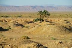 Кратеры в пустыне Стоковые Изображения RF