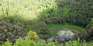 Кратер вулкана Стоковое фото RF