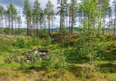 Кратер метеорита около Torbyggee, Швеции Стоковые Изображения