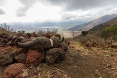 Кратер Ngorongoro Стоковые Изображения RF