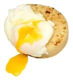 Краденные яичко и Crumpet стоковое изображение