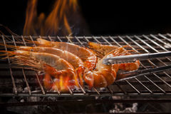 Креветка, креветка зажаренная на плите барбекю Стоковые Фотографии RF