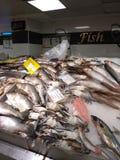 Креветка супа продукта моря на продвижении рыбного базара Стоковая Фотография RF