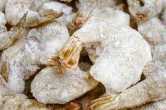 Креветки замороженного льда сырцовые Стоковая Фотография RF