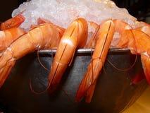 Креветки на льде. Стоковые Фото