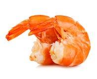 Креветки тигра креветки изолированные предпосылкой белые Морепродукты Стоковые Изображения