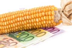 Кредитки евро с ударом мозоли Стоковые Изображения