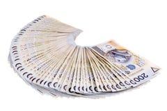 кредитки 100 злотых заполированности 2 Стоковые Фотографии RF