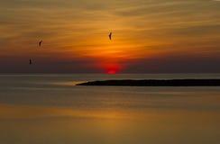 кренит наружный заход солнца Стоковые Изображения