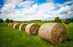 Крены сена засыхания Стоковые Фотографии RF