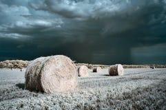крены сена Стоковые Изображения