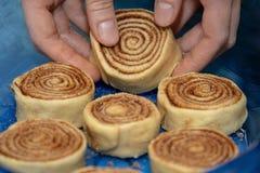 Крены циннамона заготовки помещены в голубом прозрачном печь блюде стоковое изображение rf