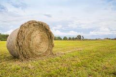 Крен сена в открытом поле Стоковые Фото