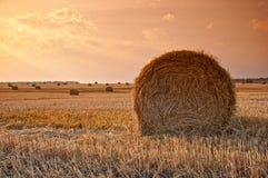 Крен сена на заходе солнца Стоковые Фото