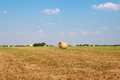 Крен сена на ферме Стоковая Фотография