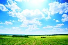 крен сена поля Стоковые Изображения