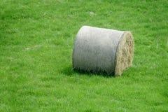 Крен стога сена на зеленой траве Стоковое Изображение