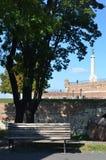 Крепость Белград Стоковая Фотография RF