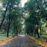 Крепость в осени Стоковая Фотография