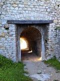 крепость в tesanj стоковые фото