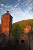 Крепость Гейдельберг стоковые фотографии rf