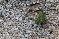 Крепость 09 Стоковая Фотография