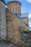 Крепость Ananuri Стоковые Фото