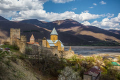 Крепость Ananuri Стоковое Фото
