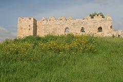 крепость antipatris Стоковое Изображение