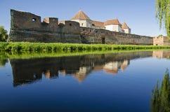 Крепость Fagaras Стоковая Фотография RF