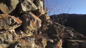 Крепость Poenari сток-видео