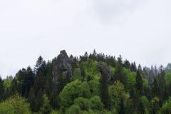 Крепость Urich Стоковое Изображение