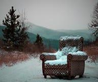 Кресло в середине древесин стоковые фото