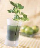 кресс-салат зеленого цвета коктеила боулинга Стоковые Изображения RF