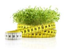 кресс-салат диетпитания Стоковая Фотография RF
